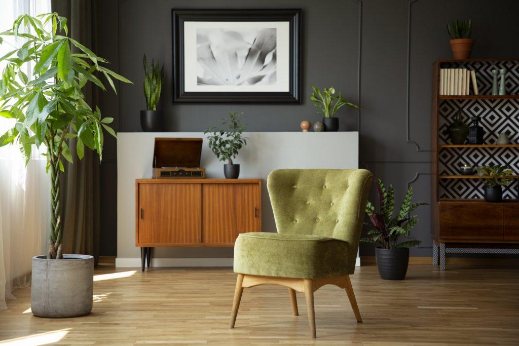 green-chair-next-to-plant-in-grey-living-room-inte-U8KWZHV.jpg
