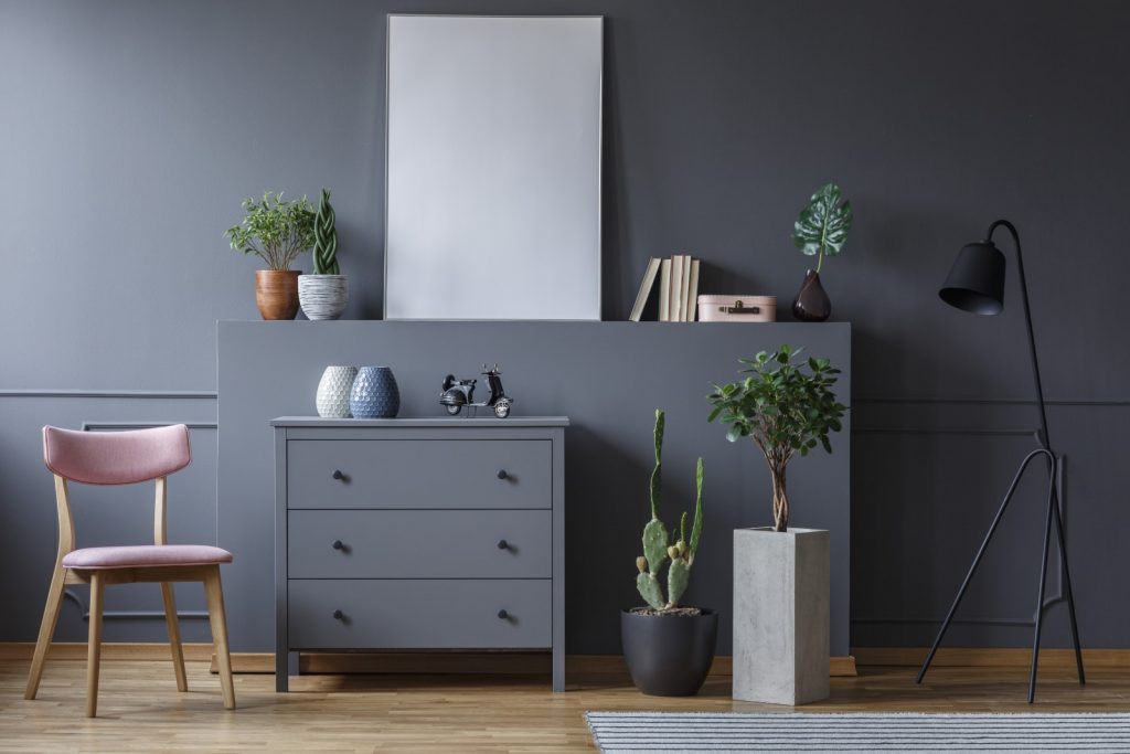grey-cabinet-between-wooden-chair-and-plants-in-li-G7C8YB4.jpg